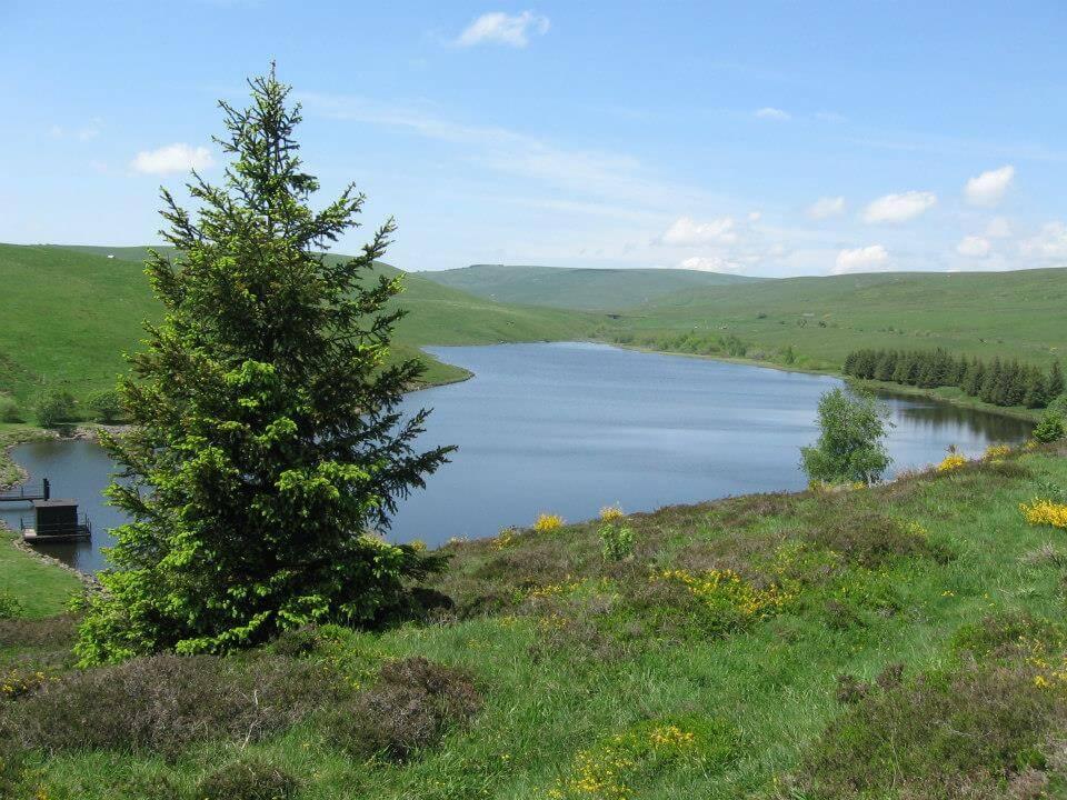 lac de la terrisse cezallier cantal